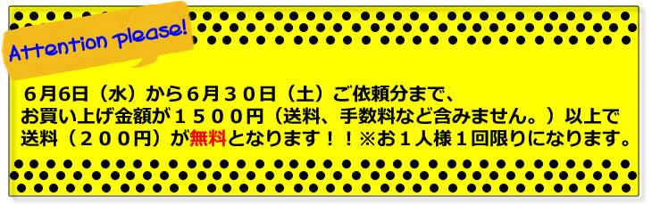 6月5日(水)から6月30日(土)まで1500円以上ご購入のお客様送料無料キャンペーン!